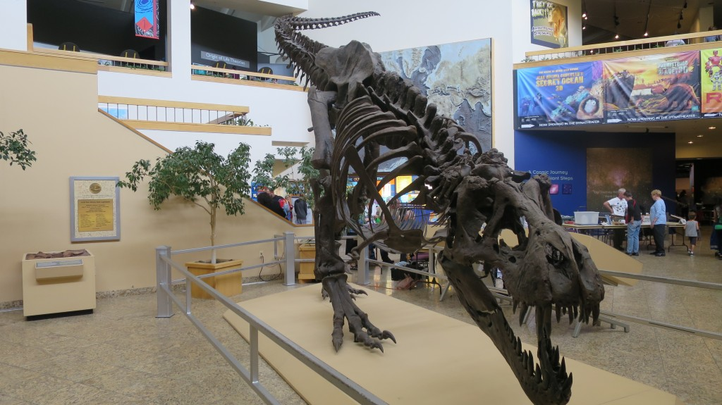ALBUQUERQUE, N.M. (KRQE) - A well-known New Mexico dinosaur fossil may soon have a life-like companion. The New Mexico Museum of Natural History Foundation has launched a .