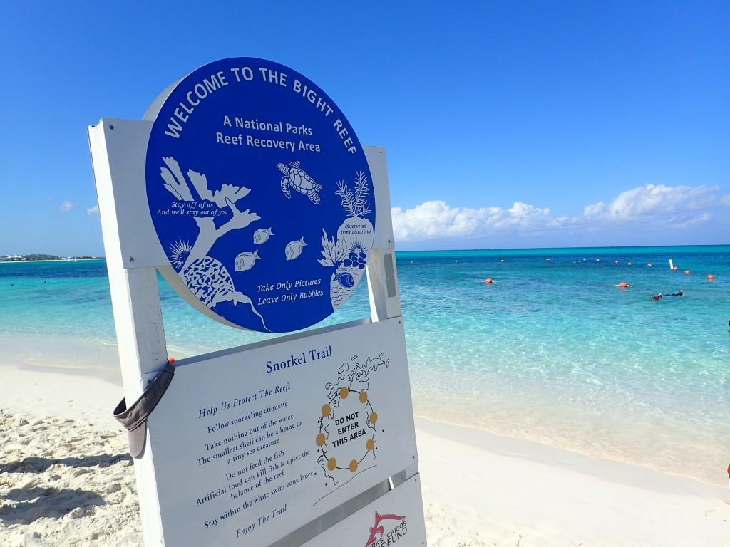 Coral Gardens Reef Providenciales Turks Caicos KMB Travel Blog