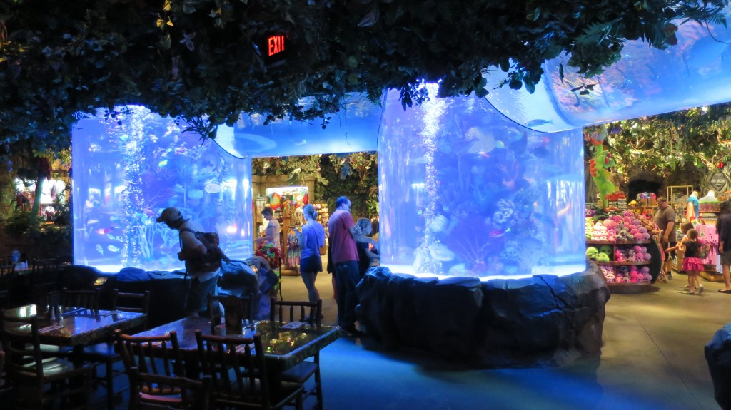 Cost Of Rainforest Cafe At Disney