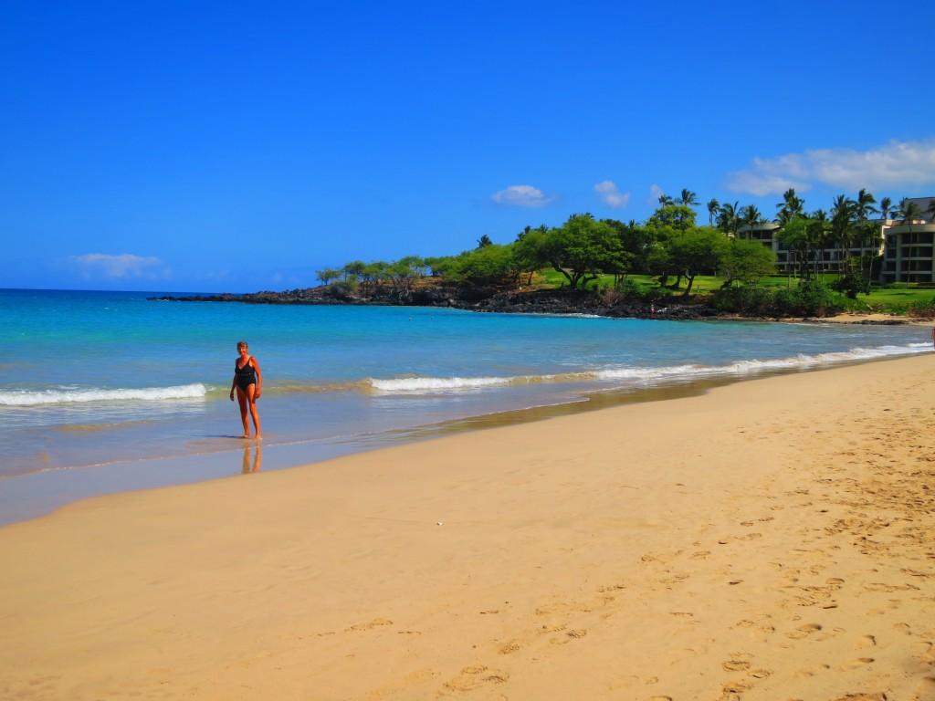 2015 Hawaii S100 2023