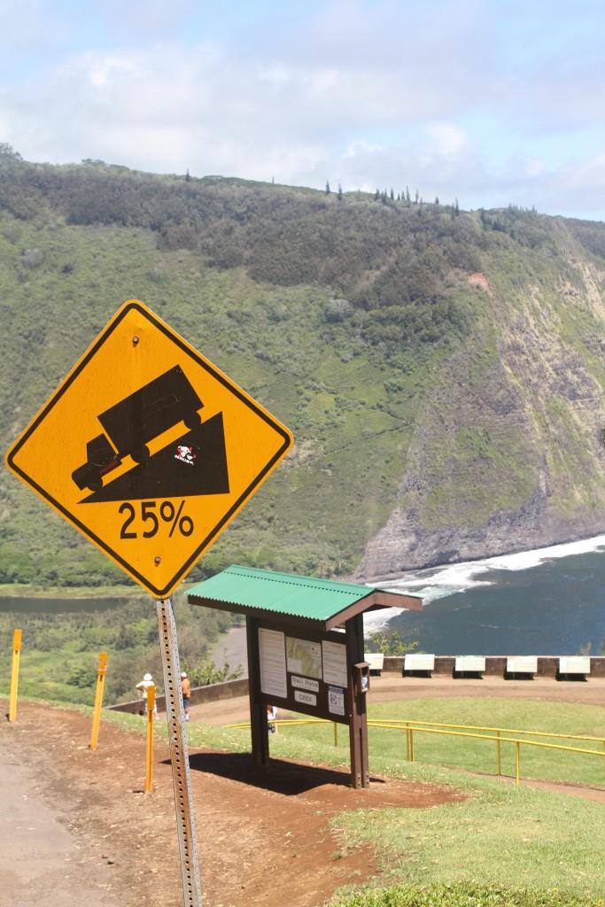 Hawaii 062012 7D 421