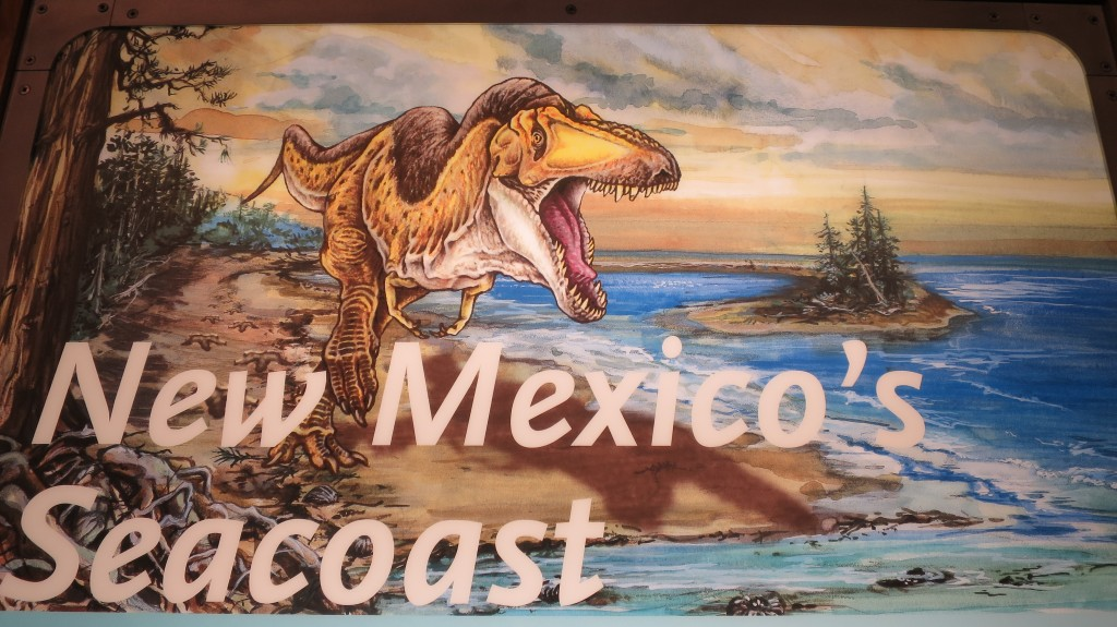 2015 New Mexico S120 1399 | It is hard to imagine that New Mexico was a sea at one time.