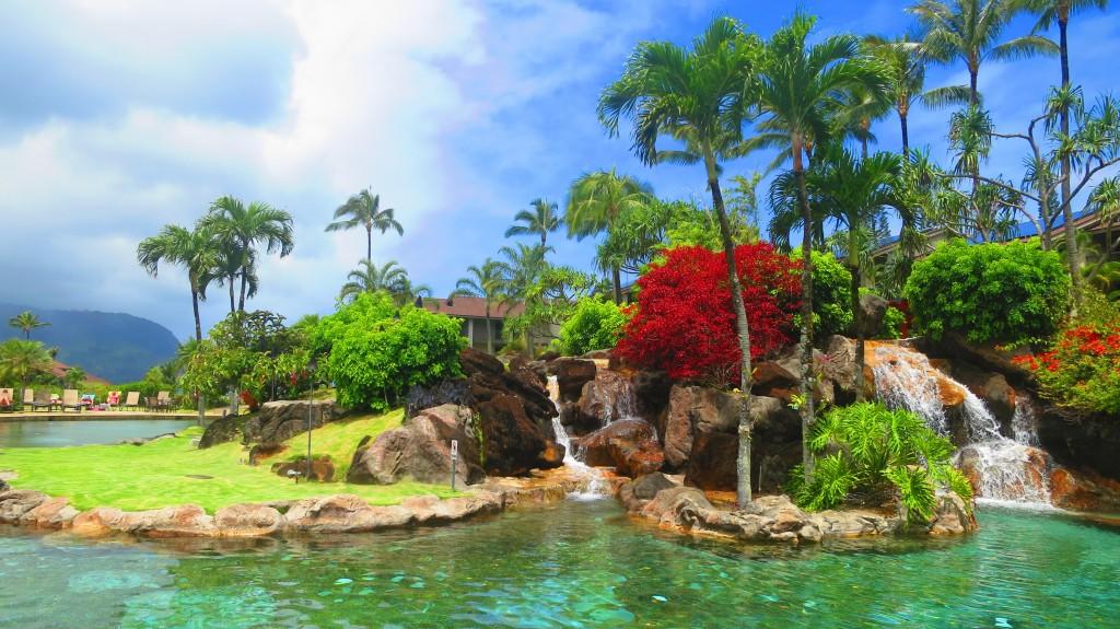 2015 Hawaii S100 3065